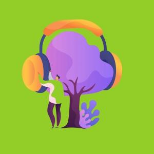 تجربه شنوایی